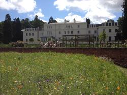 view of the hotel from the meadow