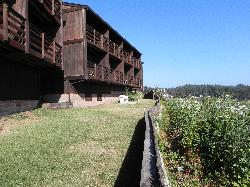 Harbor Lite Lodge