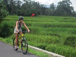 Bali Bike Adventures