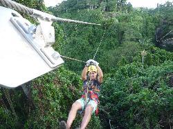 Vanuatu Jungle Zipline