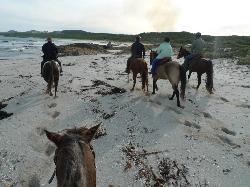 King Island Trail Rides