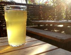 Feijoa Cider on the patio, yum!