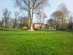 Villa Litta Modigliani (Affori) Biblioteca e Parco