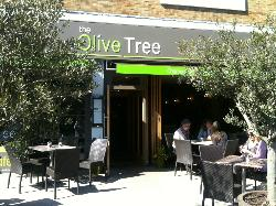 ‪The Olive Tree‬