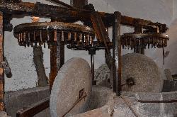 Museo Frantoio Panizzi