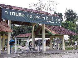 Adolpho Ducke's Botanical Garden of Manaus