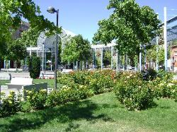 Plaza del Pradillo