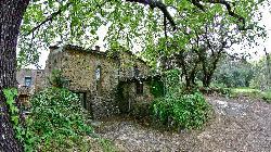 Domaine des Bruguieres