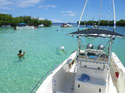 Coastal Marine Boat Tours