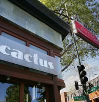 Cactus Taqueria