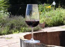 Corcoran Vineyards