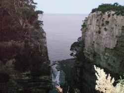 VIP Tours Tasmania - Tours