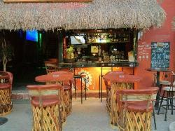 Kokonuts Isla Mujeres
