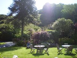 Combe house grounds
