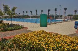 Det store svømmebassenget