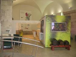 ViniPortugal - Lisbon Wines of Portugal Tasting Room, Sala Ogival