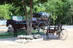 Min Thu Horse and Cart Tour
