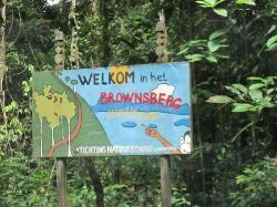 Brownsberg Nature Park