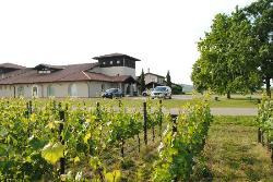 Azienda Agricola Vie di Romans