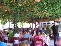 Oasis Restaurant Bar