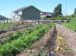 Solstice Farm B & B
