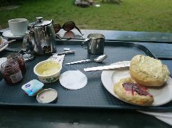 The Orchard Tea Garden