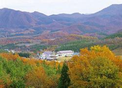 Resort Inn Daikura