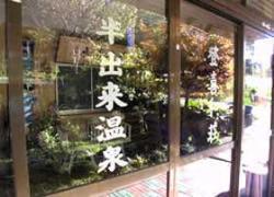 Handeki Onsen Tokiwaso
