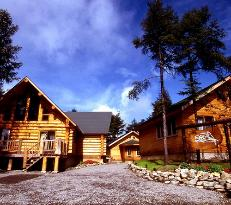Log Hotel Early Bird