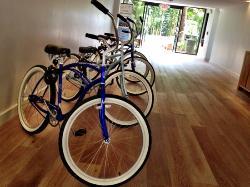 free use of bikes