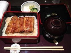 Unagi Tsukiji Miyagawa Honten Odakyu Fujisawa