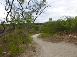 Cedar Ridge Preserve managed by Audubon Dallas.