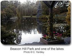 Parc de Beacon Hill