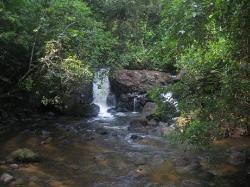 Foundation for Nature Preservation (Stinasu)