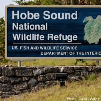 Hobe Sound National Wildlife Refuge
