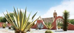 Real de Asientos, Pueblo Magico