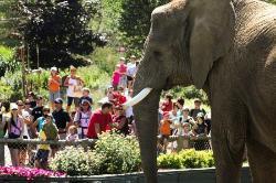 Granby Zoo (Zoo de Granby)