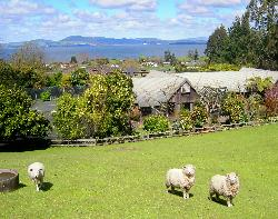 A Panoramic Country Homestay
