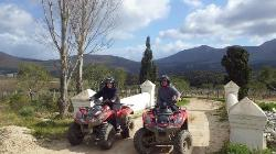 Hermanus Forest Adventures