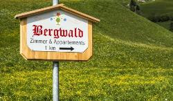 That`s the way.....to the Bergwald