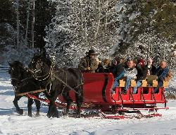 Mountain Springs Lodge Sleigh Rides