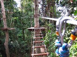 Tree Top Adventure Park, Pattaya