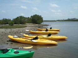 Kayak Lake Worth -  Tours