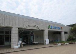 Kannonzaki Natural History Museum