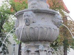Zizkov Fountain