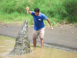 Crocodile Man Tour