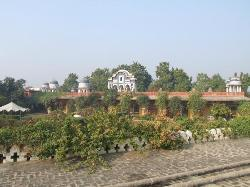 View of lawns