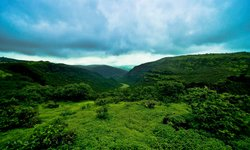 Best Shore Trips Salalah