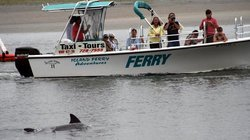 Island Ferry Adventures