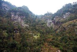 舜皇山国家森林公园